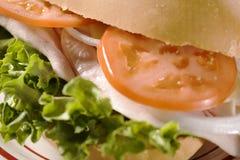 Turkey Sandwich. Turkey, Cheese, Lettuce, Tomato and Onion Sandwich Stock Photo
