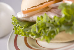 Turkey Sandwich. Turkey, Cheese, Lettuce, Tomato and Onion Sandwich royalty free stock images