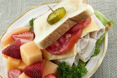 Turkey Sandwich And Fruit Plate Stock Photography
