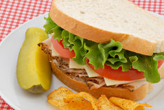 Turkey Sandwich and Pickle Royalty Free Stock Image