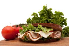 Turkey sandwich on rye bread Stock Image