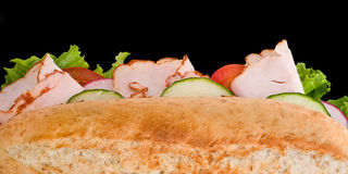 Turkey sandwich top view Royalty Free Stock Photo