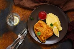 Turkey schnitzel with mashed potatoes. Tomato sauce Royalty Free Stock Photos