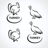 Turkey set. Vector Royalty Free Stock Images