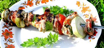 Turkey shashlik barbeque with vegetables and parsley Stock Images