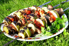 Turkey shashlik barbeque with vegetables and parsley Royalty Free Stock Images