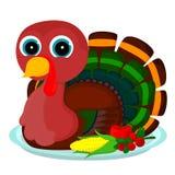 Turkey Stock Photo
