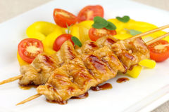 Turkey skewers Stock Photography