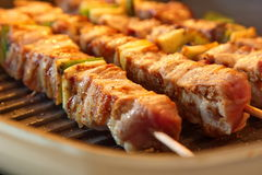 Turkey skewers on the grill Royalty Free Stock Images