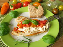 Turkey steak with tomato pepper salsa Royalty Free Stock Photography