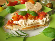 Turkey steak with tomato pepper salsa Stock Image