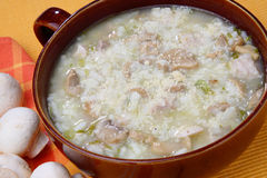 Turkey stew with champignons. In ceramic bowl Royalty Free Stock Images