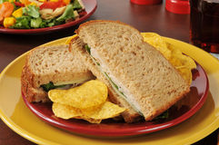 Turkey and swiss sandwich with a salad Royalty Free Stock Images