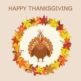 Turkey for thanksgiving day, vector  Stock Photos