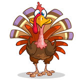 Thanksgiving happy turkey mascot isolated on white background Royalty Free Stock Images