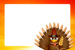 Turkey for Thanksgiving Royalty Free Stock Images