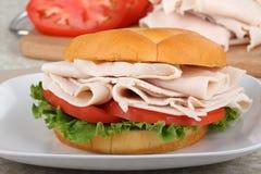 Turkey, Tomato Sandwich Royalty Free Stock Image