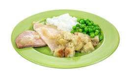 Turkey TV Dinner on Plate Angle Royalty Free Stock Image