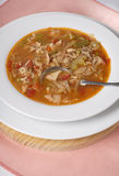Turkey vegetable soup. Brothy tasting soup made from leftover Thanksgiving or Christmas turkey stock image