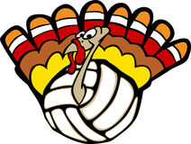Turkey Volleyball. Vector Image of a Volleyball Turkey Stock Image