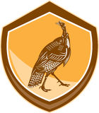 Turkey Walking Shield Retro Royalty Free Stock Image