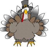 Turkey Wearing A Pilgrim Hat stock illustration