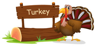 A turkey with a wooden signboard Stock Photography