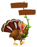 A turkey with a wooden signboard in a vine plant Stock Photo
