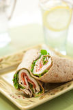 Turkey wrap Royalty Free Stock Images