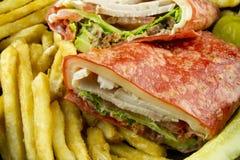 Turkey Wrap With Fries Royalty Free Stock Photos