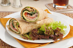 Turkey wraps on a bed of lettuce Stock Images