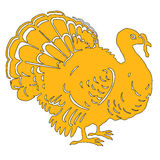 Turkey yellow Royalty Free Stock Images