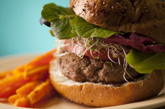 Turkeyburger Royalty Free Stock Photos