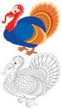 Turkiet Royaltyfri Bild