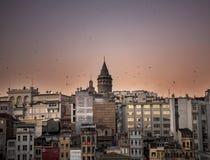 Turkiet Istanbul Fotografering för Bildbyråer