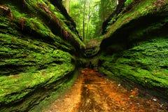 Turkiet körningsdelstatspark Indiana Royaltyfria Bilder