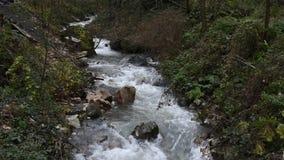 Turkiet Kocaeli, Masukiye är en populär destination för att äta och att spendera tid Frukost stolar lager videofilmer