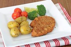Turkije escalopes met groenten Stock Fotografie