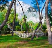 Turkije, hangmat in tropische tuin Royalty-vrije Stock Afbeeldingen