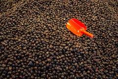Turkish вводят подготовленные оливки в моду в рынке Стоковая Фотография RF