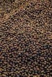 Turkish вводят подготовленные оливки в моду в рынке Стоковые Фотографии RF