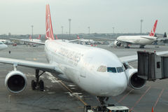 Turkish Airlines flygplanlogi på den Istanbul Ataturk flygplatsen Arkivfoto