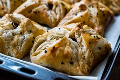 Turkish Borek made with mille feuille and minced meat. Royalty Free Stock Photos