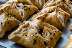 Turkish Borek made with mille feuille and minced meat. Stock Photos