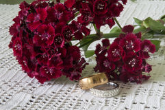 TURKISH CARNATION PAIR OF GOLDEN RINGS Royalty Free Stock Images
