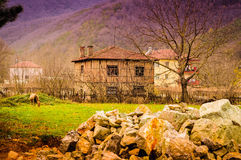 Turkish Countryside Environment Stock Image