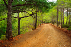 Turkish dirt road Stock Photography