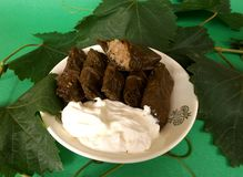 Turkish dolma. With grape leaves with meat and rice Stock Image