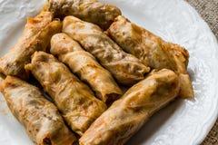 Turkish Dolma Lahana Sarmasi / Cabbage Rolls. Royalty Free Stock Photos