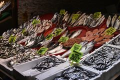 Turkish farmer market. Variety of fresh fish and shrimps with price on the counter. Istanbul stock images